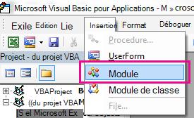 Dans le menu Insertion, cliquez sur Module.