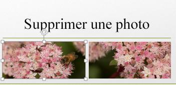 Lorsque vous sélectionnez une image, celle-ci est entourée de «poignées».