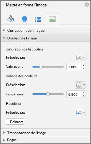 Ajuster les paramètres de saturation des couleurs dans le volet Format de l'image