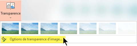 Les options de transparence d'image vous permettent de choisir un niveau d'opacité personnalisé pour une image.