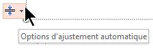 L'outil options d'ajustement automatique s'affiche lorsqu'un espace réservé est rempli avec du texte