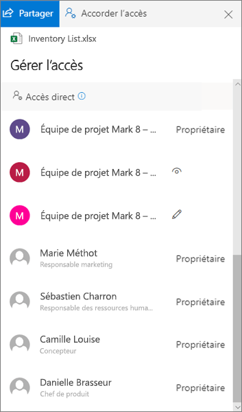 Section accès direct du volet gérer l'accès dans OneDrive entreprise