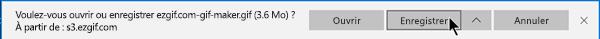 Vous pouvez spécifier l'emplacement où vous voulez que le fichier GIF soit copié sur votre ordinateur