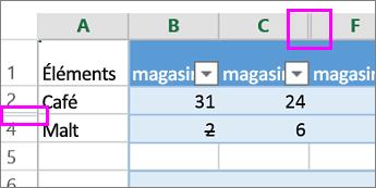 Une barre double en face des en-têtes de colonne ou de ligne indique des lignes ou des colonnes masquées