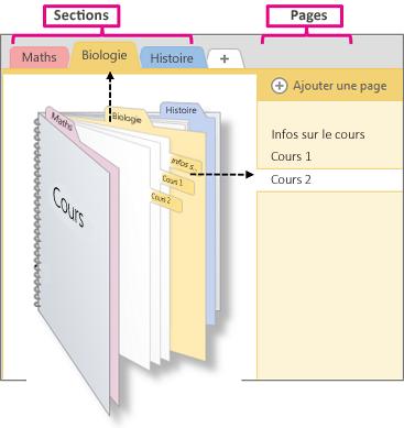 Vue d'ensemble des sections et des pages