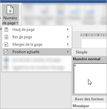 Capture d'écran montrant le choix d'un numéro de page au format brut à l'emplacement actuel dans le document
