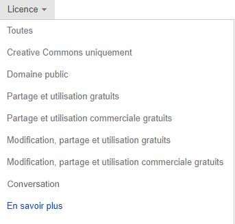 Le menu déroulant licence défini sur libre à modifier, partager et utiliser commercialement.