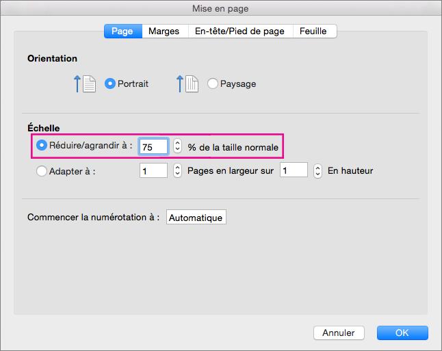 Boîte de dialogue Mise en page avec l'option Réduire/agrandir à sélectionnée