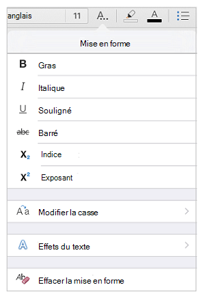 Options de mise en forme du texte