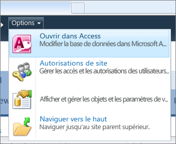 Menu Options d'un site de base de données web sur SharePoint