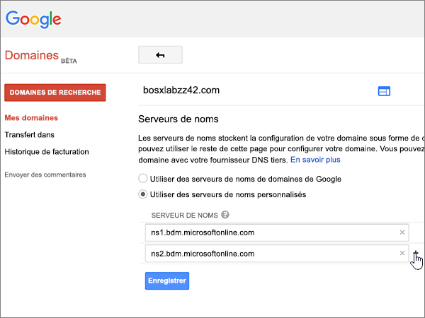Google-Domains-BP-Redelegate-1-8