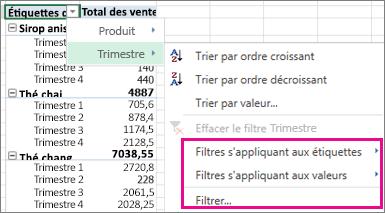 Options de filtrage pour les données de tableau croisé dynamique