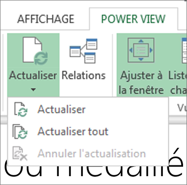 Bouton Actualiser de Power View