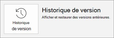 Bouton historique des versions dans l'onglet fichier.