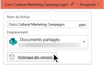 Sélectionnez le nom du fichier dans la barre de titre pour accéder à l'historique des versions du fichier.