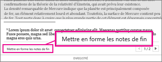 Bouton Mettre en forme les notes de bas de page dans la zone de modification des notes de bas de page de Word Online