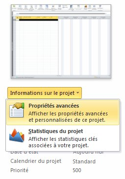 Image du menu Propriétés du fichier.