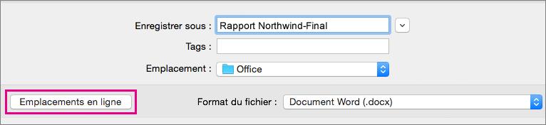 Dans le menu Fichier, cliquez sur Enregistrer sous, puis sur Emplacements en ligne pour enregistrer un document dans un emplacement en ligne.