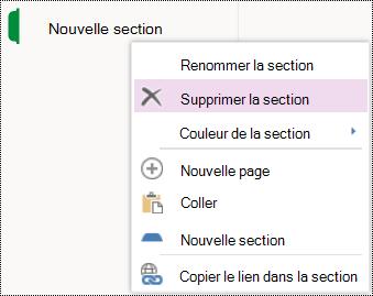 Option du menu Supprimer la section dans OneNote Online