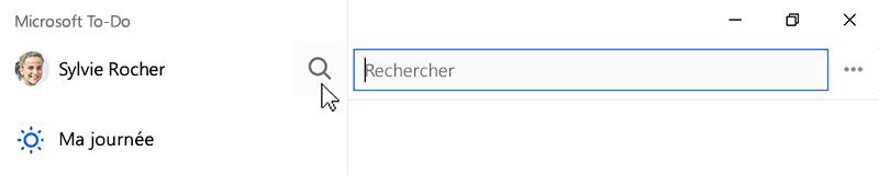 Capture d'écran montrant l'icône de recherche sélectionnée et le champ de recherche ouvert