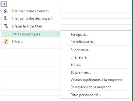 options de filtrage personnalisé disponibles pour les valeurs numériques.