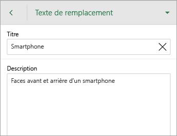 Commande Texte de remplacement sous l'onglet Image