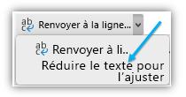 Capture d'écran illustrant le bouton Réduire le texte pour l'ajuster du ruban.