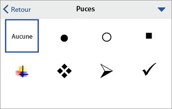 Commande Puces, affichant les options de mise en forme