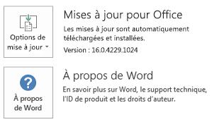 Lorsque Office a été installé à l'aide de la technologie Démarrer en un clic, les informations de mise à jour et d'application se présentent comme suit.