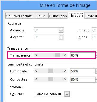 Capture d'écran de la boîte de dialogue Format de l'image dans Publisher
