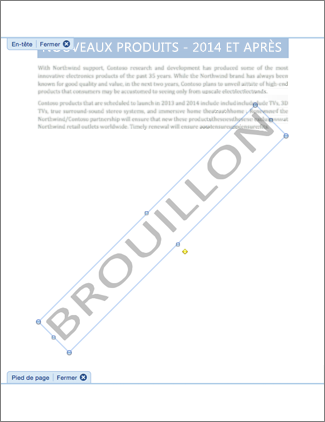 Image d'un document avec le filigrane Brouillon.