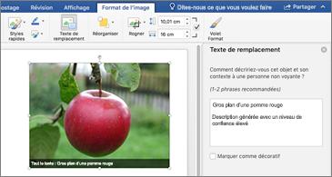 Document Word avec une image et le volet Texte de remplacement sur la droite
