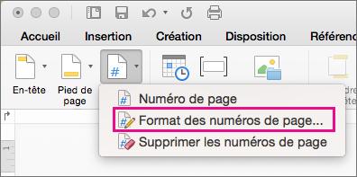 Pour mettre en forme les numéros de page, sous l'onglet En-tête et pied de page, cliquez sur Numéro de page, puis sur Format des numéros de page.