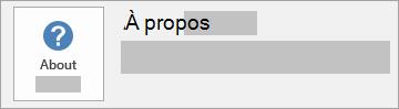 Capture d'écran du bouton À propos d'Office pour une installation MSI. Aucun numéro de version ou de sous-version n'est inclus.