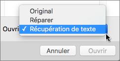 Cliquez sur Ouvrir > Récupération de texte, puis ouvrez le document endommagé pour tenter de le récupérer