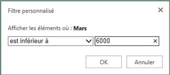 application d'un filtre personnalisé pour afficher les valeurs inférieures à un certain critère