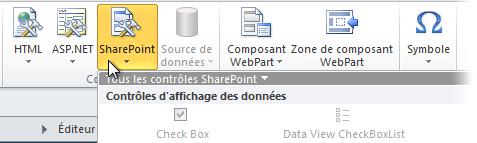 Menu SharePoint dans le ruban SharePoint Designer2010