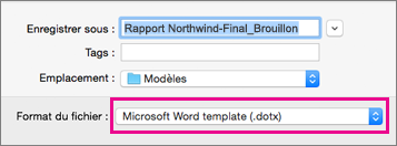 Dans la zone Enregistrer sous, le format Modèle Word est mis en évidence