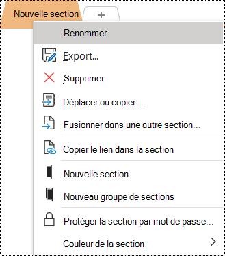 Capture d'écran du menu contextuel avec l'option Renommer sélectionnée.