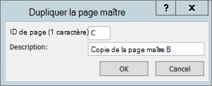 Capture d'écran montrant la boîte de dialogue page maître dupliquée.