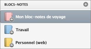 État hors connexion de la liste des blocs-notes