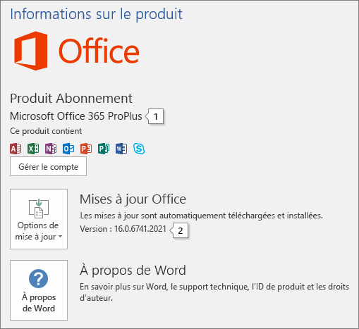 Capture d'écran de la page Compte contenant le nom du produit Office et le numéro de version complet