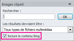 Case à cocher Inclure le contenu Bing