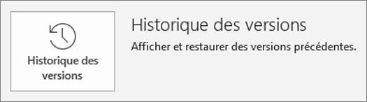 Bouton pour l'historique des versions dans la page informations