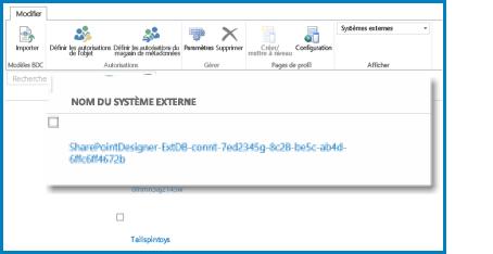 Capture d'écran du ruban dans l'affichage Externe du BCS SPO.