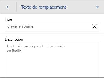 Commande Texte de remplacement dans l'onglet Image