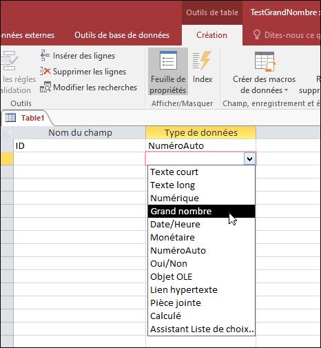 Capture d'écran de la liste de types de données dans une table Access. Le grand numéro est sélectionné.