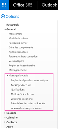 Options de messagerie vocale dans le volet Options du courrier électronique d'Outlook