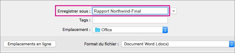 Dans la zone Enregistrer sous, entrez ou modifiez le nom de fichier du document en cours.