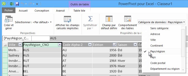 Catégories de données dans PowerPivot